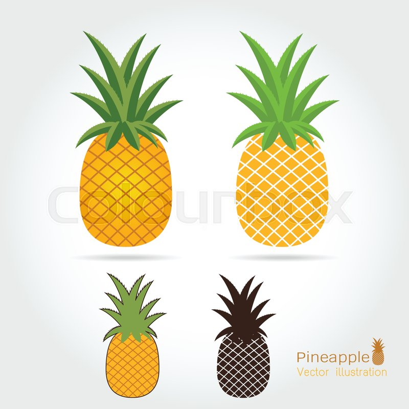 Pineapple vector icon cartoon style isolated on white ...