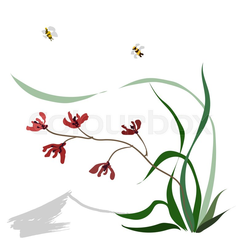 Hand Drawing Ink Illustration Vector Stylization Wild Orchid Red Flowers Background From The Mountain Flying Bumblebee Japanese Painting Style Sumi E