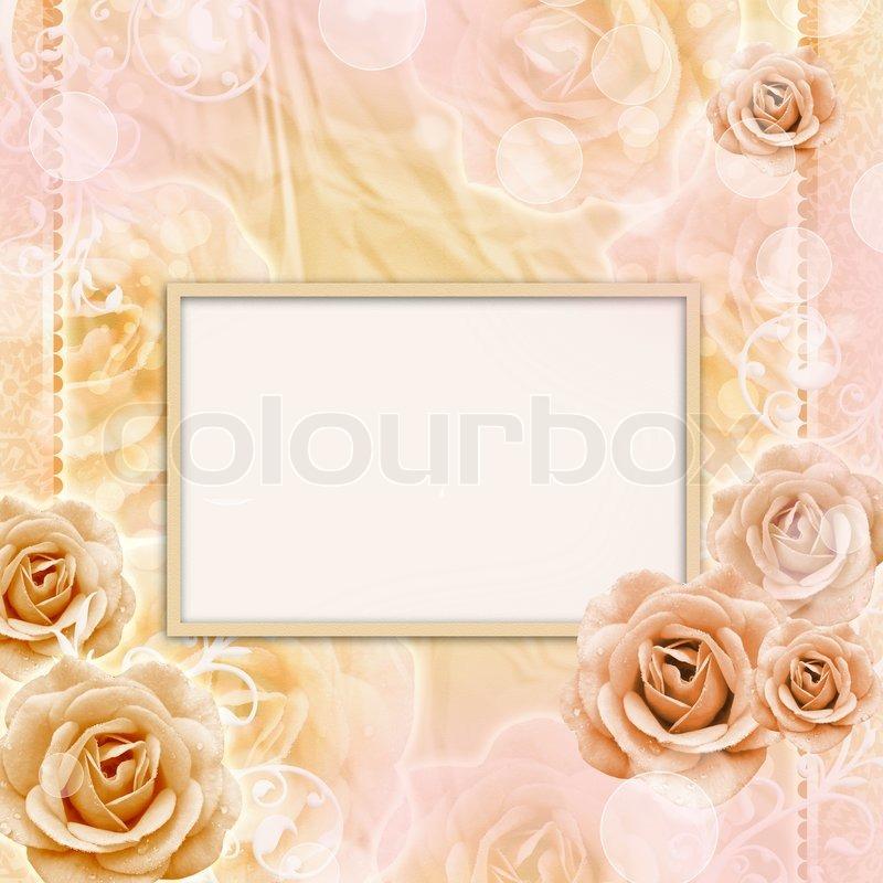 Beautiful Roses Background, stock photo