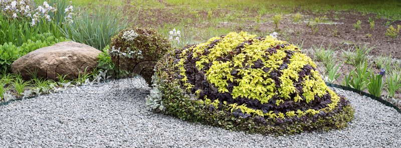 Turtle Shaped Bush In A Topiary Garden. Ornamental Park Garden Design.  Banner For Website. | Stock Photo | Colourbox