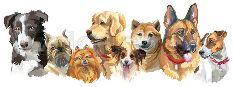 Digital Art Dog Pet Portraits