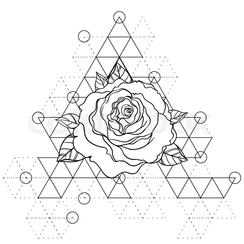 Blackwork Tattoo Flash Rose Flower Over Sacred Geometry Highly Detailed Vector Ilration Isolated On