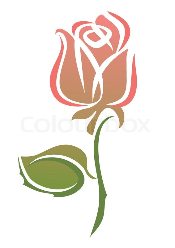 pink rose | stock vector | colourbox