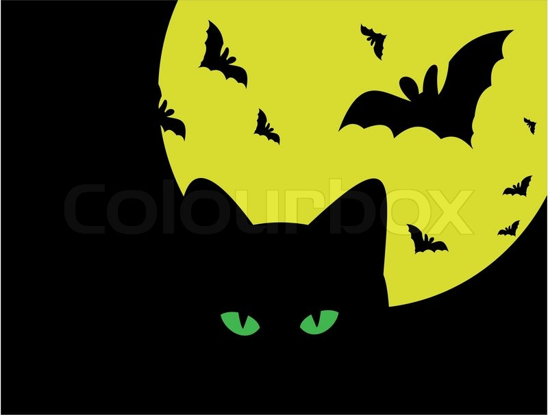 halloween silhouette of cat against the moon and bats stock vector colourbox