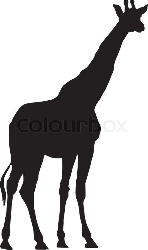 vector image of giraffe stock vector colourbox rh colourbox com giraffe vector free giraffe vector texture