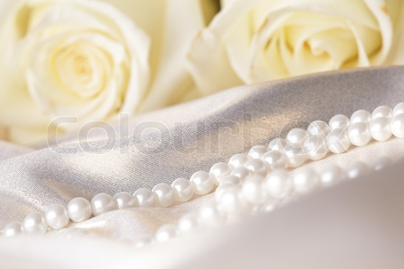 Pearl beads and cream rose on the silk background stock for Cream rose wallpaper