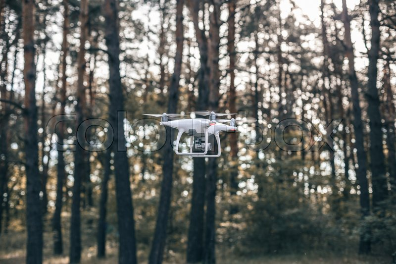 Hovering drone taking pictures in forest. The drone flies against the background of a summer, stock photo
