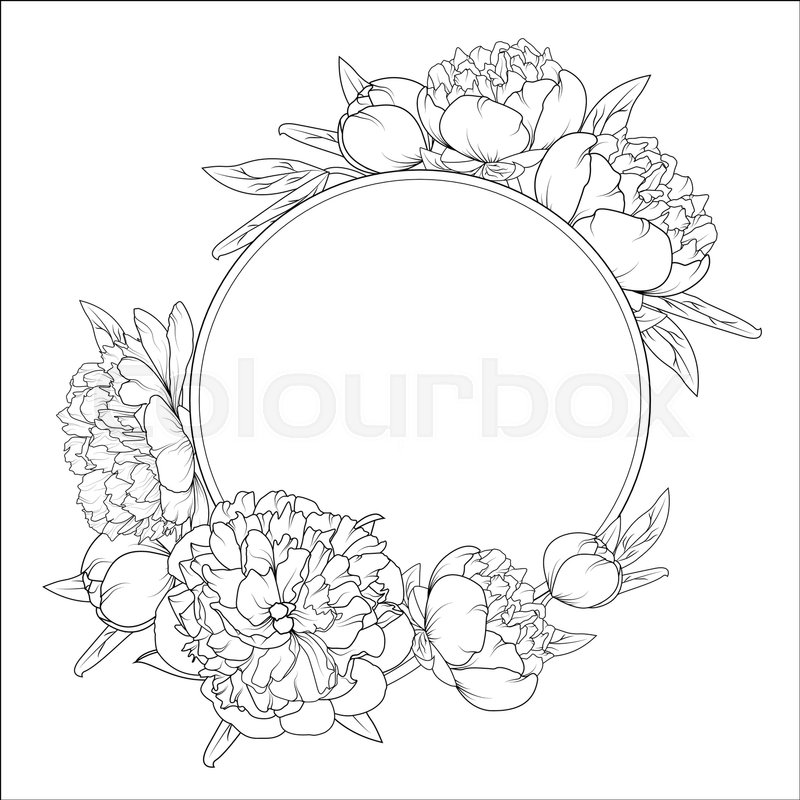 Flower Frame Line Drawing : Rose peony spring summer flowers round frame wreath