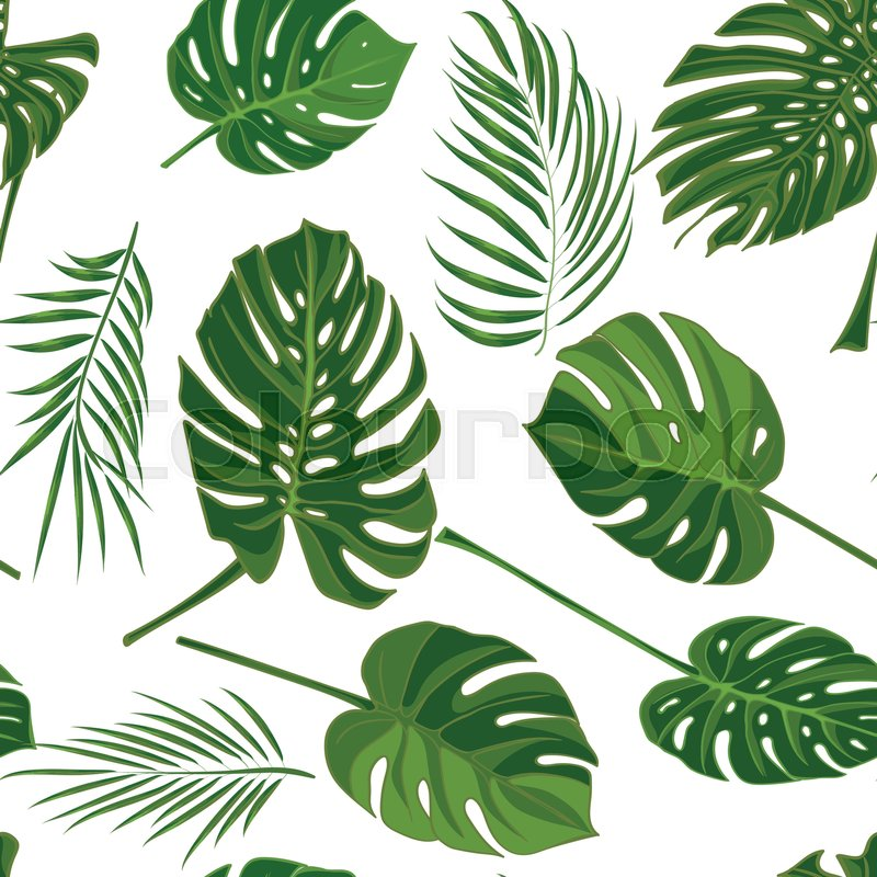 Seamless Hand Drawn Tropical Pattern Stock Vector Colourbox Each one is isolated too. seamless hand drawn tropical pattern