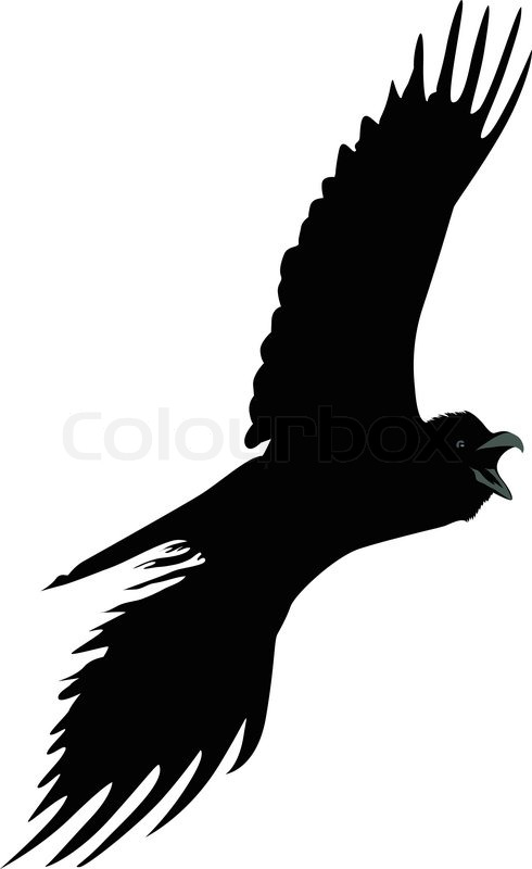 bird a raven it is isolated stock vector colourbox rh colourbox com Crow Cartoon Bird Raven Bird Drawings