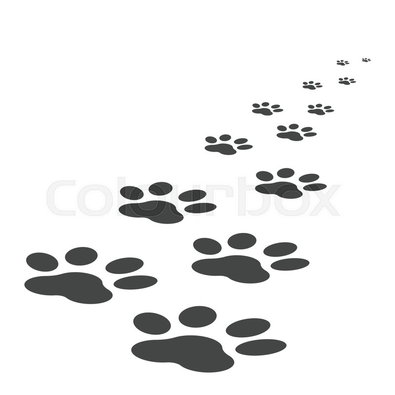paw print dog vector cat foot step animal track