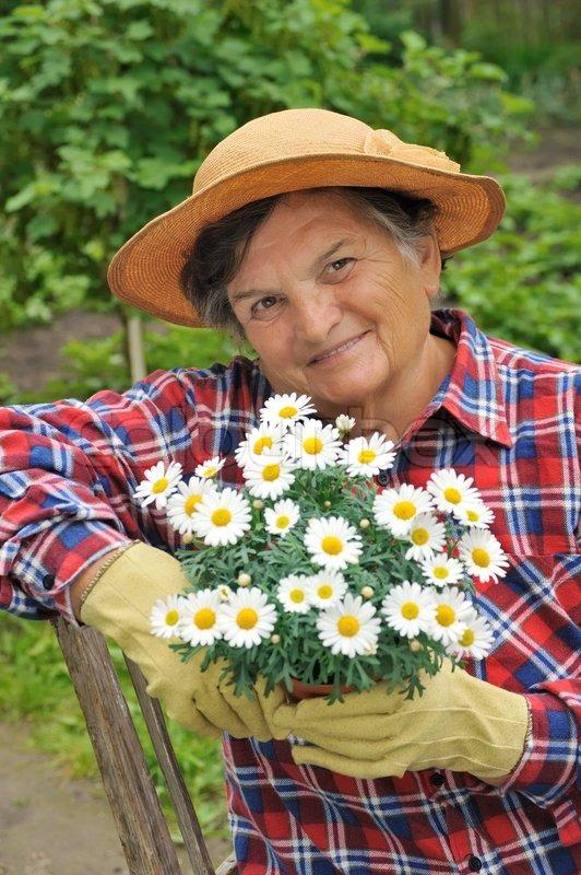 c1b030ee Senior woman gardening - holding daisy ... | Stock image | Colourbox