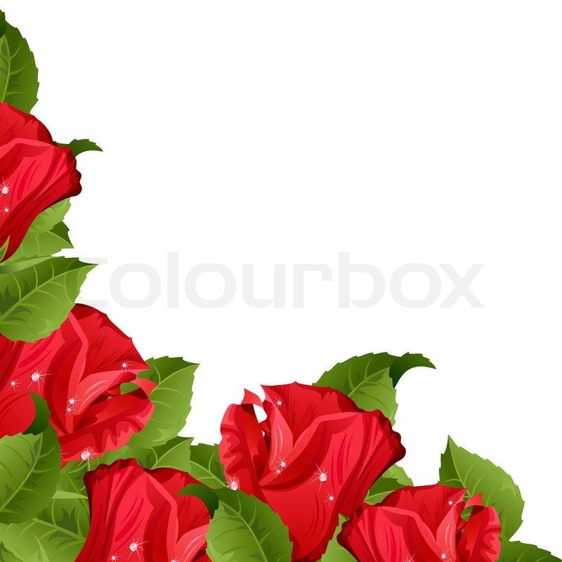 wei er hintergrund mit roten rosen vektorgrafik colourbox. Black Bedroom Furniture Sets. Home Design Ideas