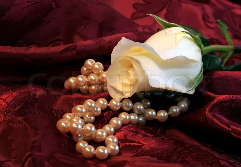 Beautiful white rose and strand of pearls on red satin ...