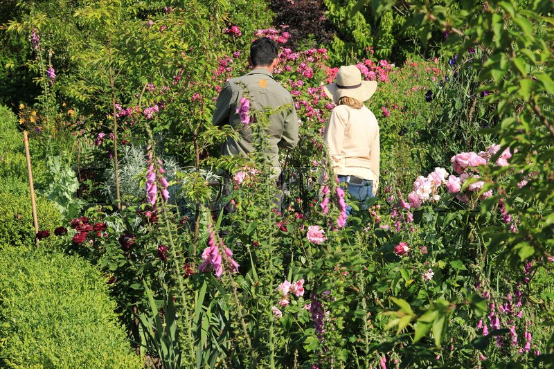 The gardeners are working in one of the blooming gardens on Sissinghurst Castle in England on a sunny day in the beautiful summer, stock photo