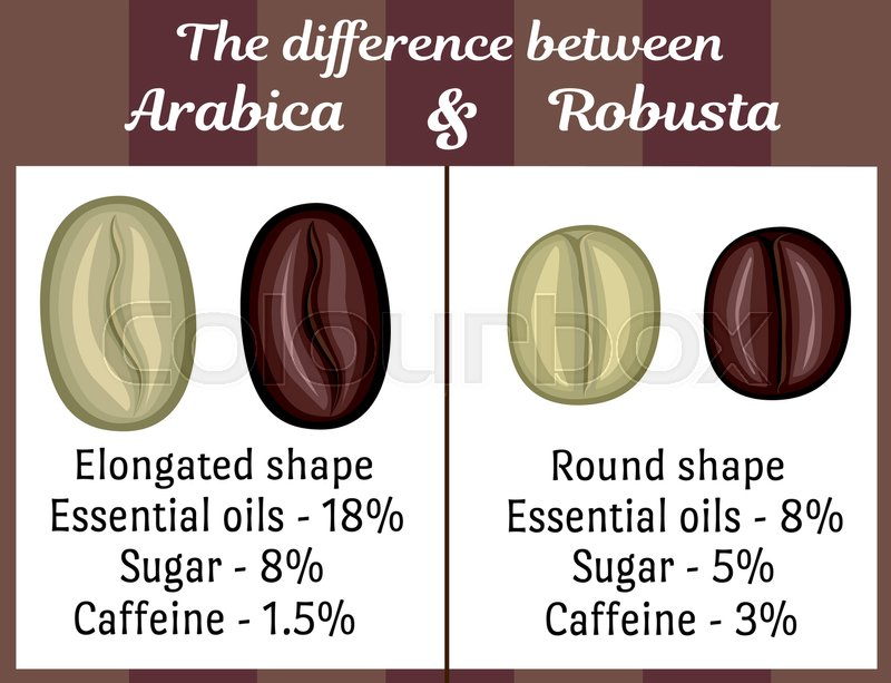The visual difference between the coffee beans of Arabica and ...