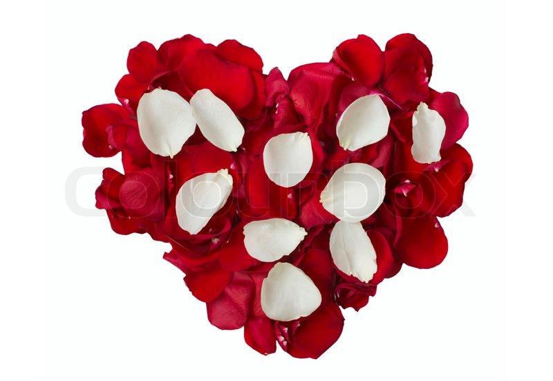 Rose Petals Heart. Red Petals Heart On White Rose Petals ...