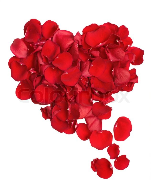 HD Footage, Dolly Red Rose Petals Heart Shape On Black Background ...