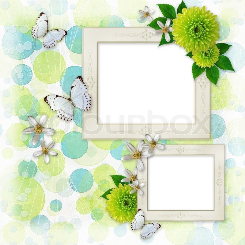 Green and blue bokeh background with decorative frames, butterfly ...
