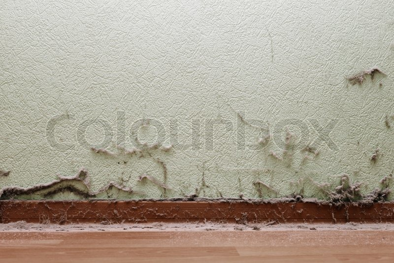 how to clean concrete dust from walls