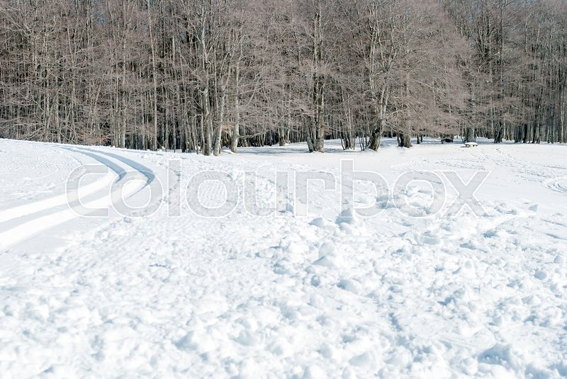 Snowy landmark with snowmobile tracks     | Stock image | Colourbox