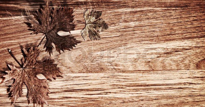 autumn leaves grenze ber naturholz hintergrund alte trockene blattform natur herbst. Black Bedroom Furniture Sets. Home Design Ideas