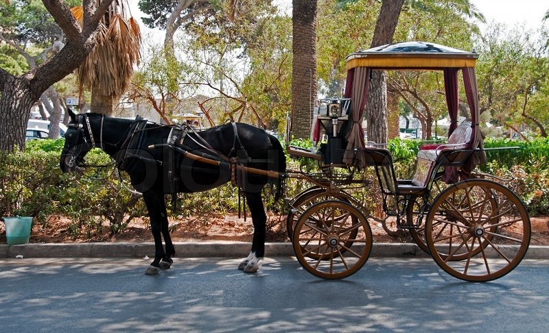 Horse and chaise as a taxi transport on malta stock for Chaise carriage