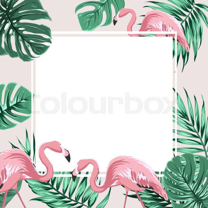 Tropical paper palm monstera leaves frame Summer