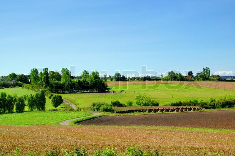 Idyllic Farm Landscape With Blue Sky, Green Fields And Trees | Stock Photo  | Colourbox