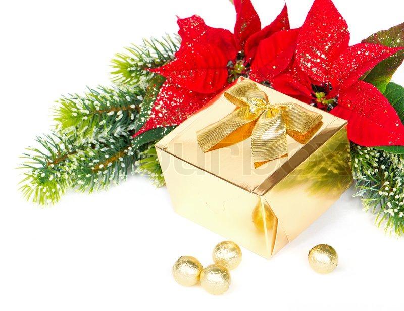 goldene geschenk und rot weihnachten blume weihnachtsstern. Black Bedroom Furniture Sets. Home Design Ideas