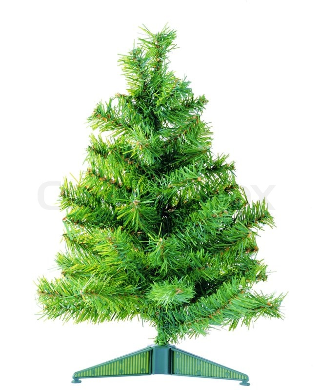 Undecorated Christmas tree on a white background | Stock ...