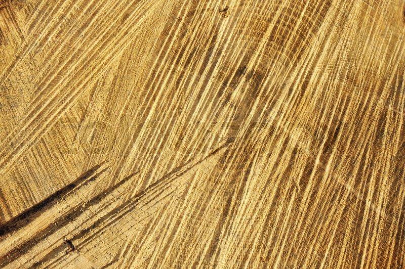 detail der holz geschnitten textur ringe und s geschnitte eiche hintergrund stockfoto. Black Bedroom Furniture Sets. Home Design Ideas