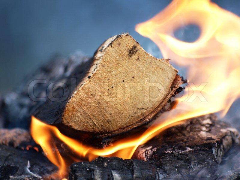 A log burning, flames and smoke on a bonfire | Stock Photo ...