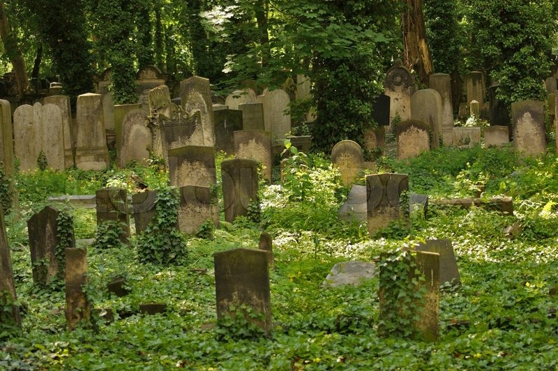 Idyllic Old Graveyard In Berlin Stock Photo Colourbox