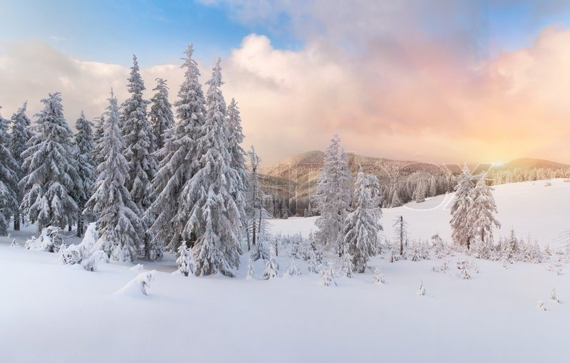 Stock image of 'Winter sunrise in the Carpathian mountains'