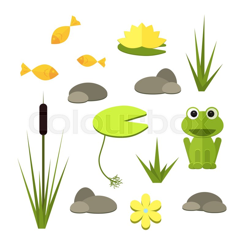 Cartoon Vector Garden Pond Elements With Water Plants And Animals Isolated Summer Life Clipart In Flat Style