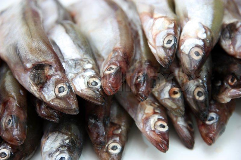 Masago Capelin Karaca Mail: Capelin Fish Isolated On The White ...