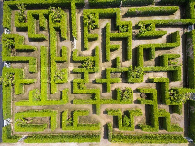 Aerial view of Green maze garden | Stock Photo | Colourbox on