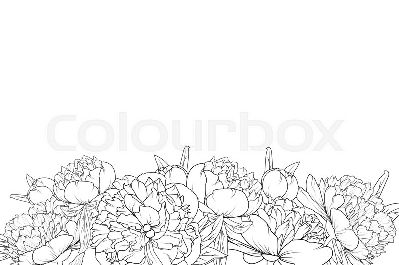 Peony Spring Summer Flowers Shrub Bloom Blossom Black And White Detailed Outline Sketch Drawing Bottom Border Frame Horizontal Landscape Layout