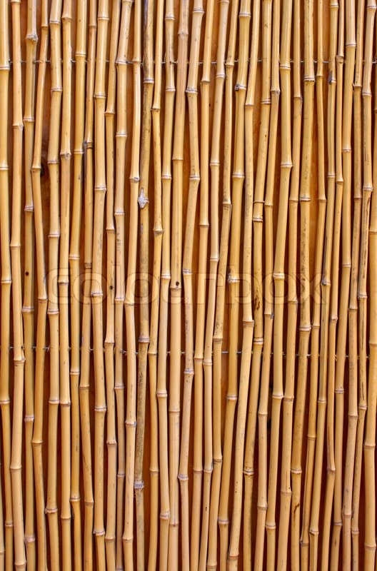 Natural Detailed Bamboo Texture Stock Photo Colourbox