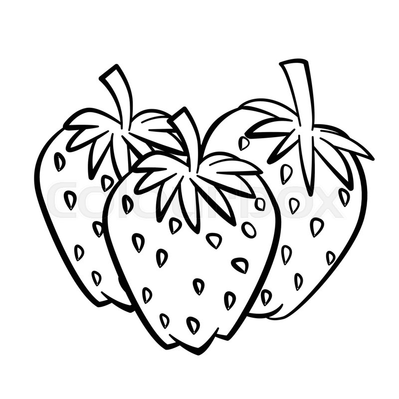 Hand drawn sketch of Strawberry with ... | Stock vector ...