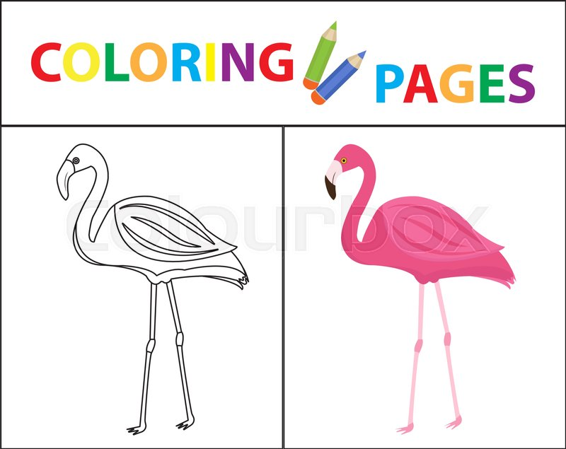 Coloring book page Flamingo Sketch outline and color version