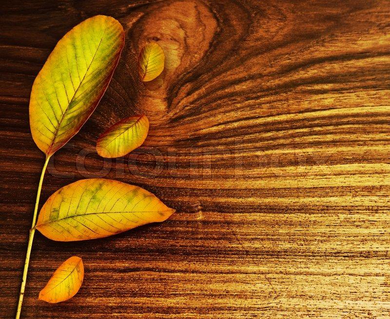 autumn leaves ber alte holz hintergrund natur fallen abstrakte grenze mit kopie raum. Black Bedroom Furniture Sets. Home Design Ideas