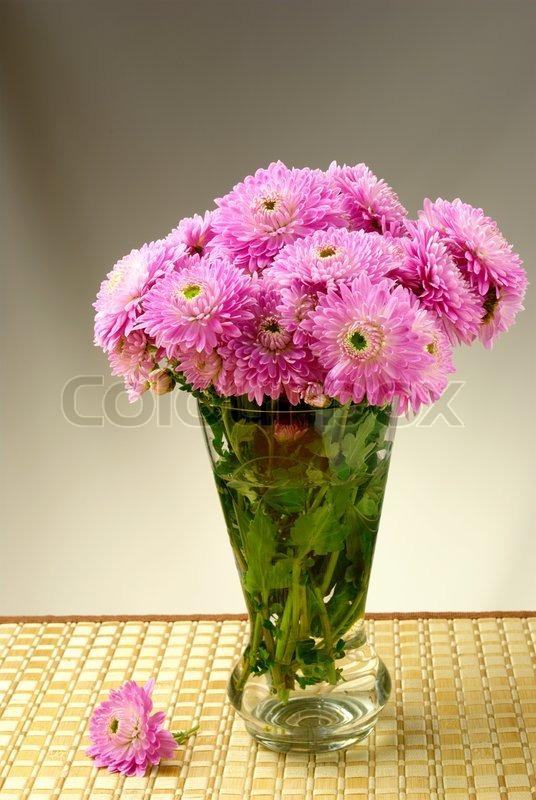 Bouquet Of Chrysanthemums In A Vase Stock Photo Colourbox