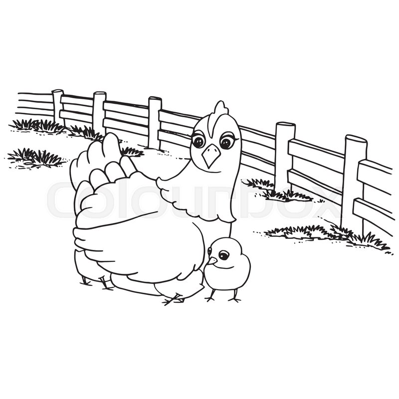 Cartoon Cute Chicken Coloring Page Vector