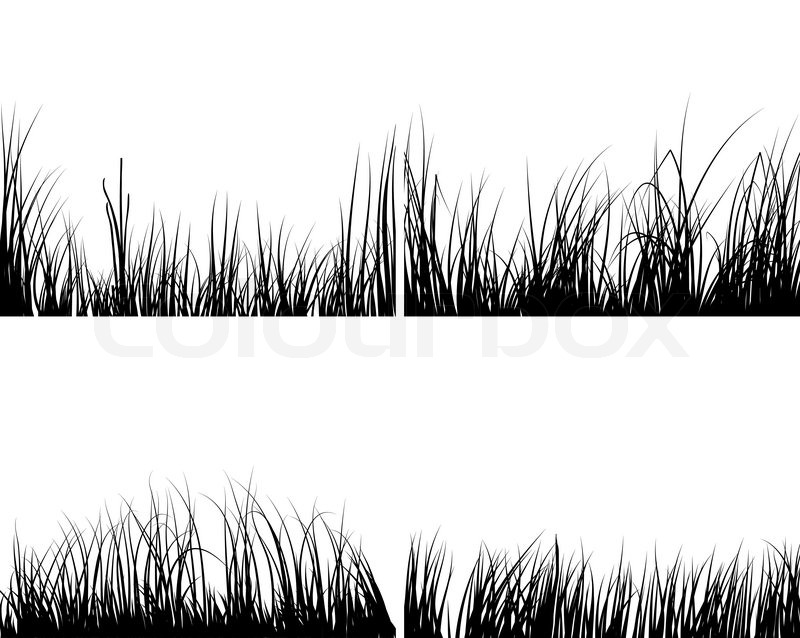 Set Of Different Meadow Vector Grass Silhouettes Stock Colourbox