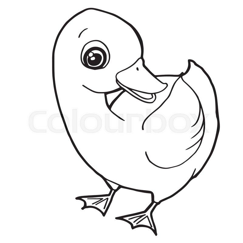 Cartoon Cute Duck Coloring Page Vector Stock Vector