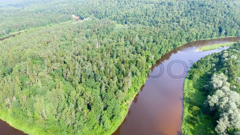 Overhead view of river across the forest, stock photo