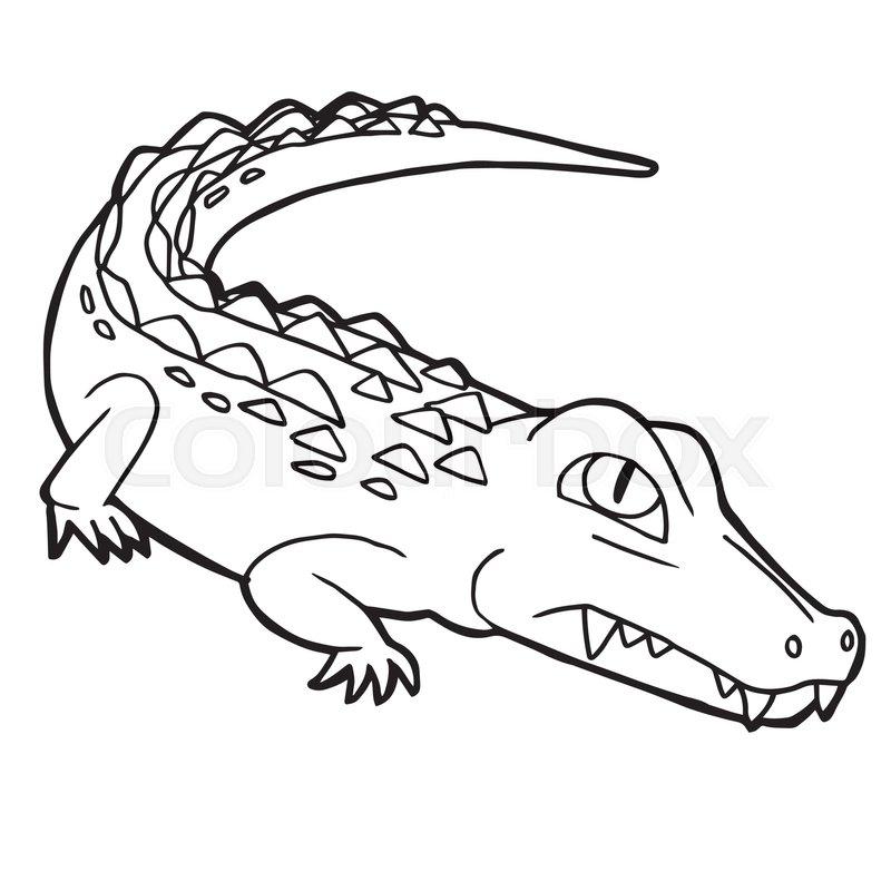 Cartoon cute crocodile coloring page vector illustration | Stock ...
