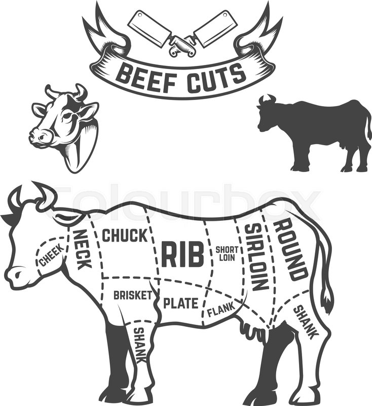 Beef Cuts Butcher Diagram Cow Illustrations On White Background